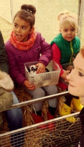 Girls with a baby animal in a basket at an animal farm